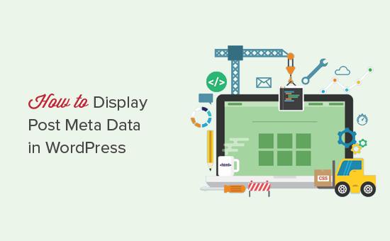 Displaying post meta data in WordPress