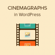 How to Create and Add Cinemagraphs in WordPress