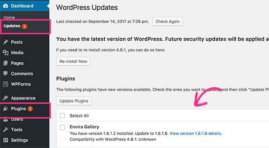 WordPress plugin update available