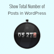 How to Show Total Number of Posts in WordPress