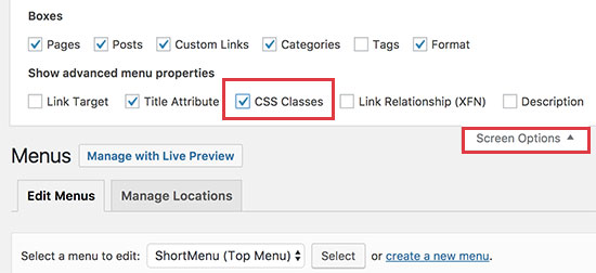 Enable CSS classes option for individual menu items