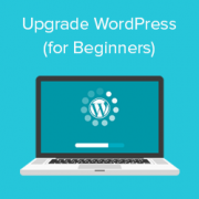 Beginner's Guide: How to Safely Update WordPress (Infographic)