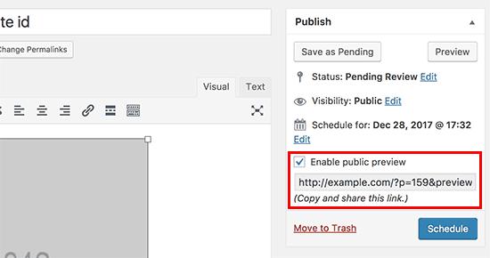 Enable public preview URL