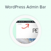 What Everybody Ought to Know about the WordPress Admin Bar