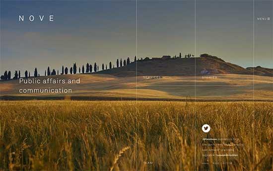 A stunning website example. Nove website is designed on WordPress. Advisory agency.