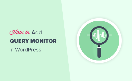 Adding a WordPress query monitor