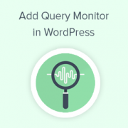 How to Add a WordPress Query Monitor On Your Site