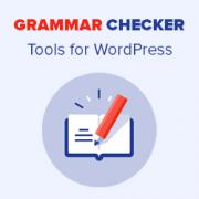 6 Best Online Grammar Checker Tools for WordPress (2021)