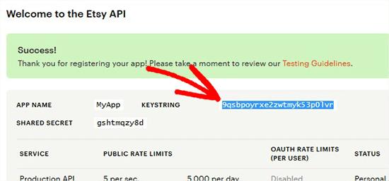 Copy Etsi API key