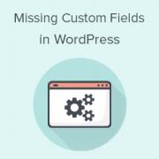 How to Fix Custom Fields Not Showing in WordPress