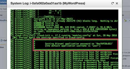 Copy your WordPress password