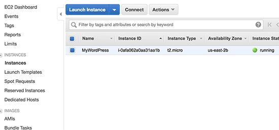 WordPress instance running