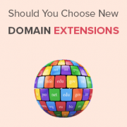Should You Choose a New Domain Extension for Your Website?