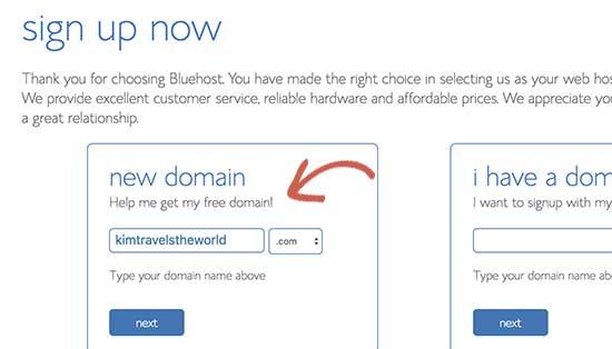 Choose domain name