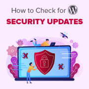 How to Check for WordPress Security Updates (Beginners Guide)