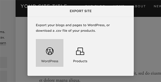 Export Squarespace data in WordPress format