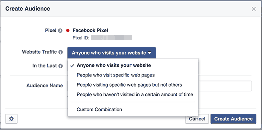 Custom audience website visitors