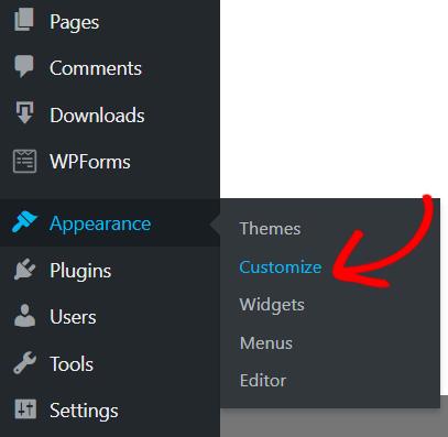 Customize option WordPress