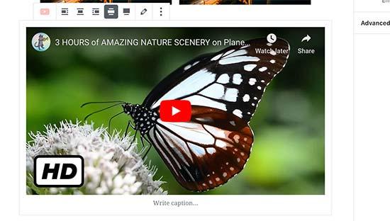 Embedding a YouTube video in WordPress