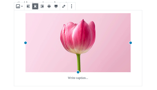 Center align an image in WordPress