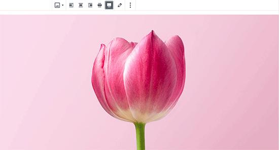 Making an image full-width in WordPress