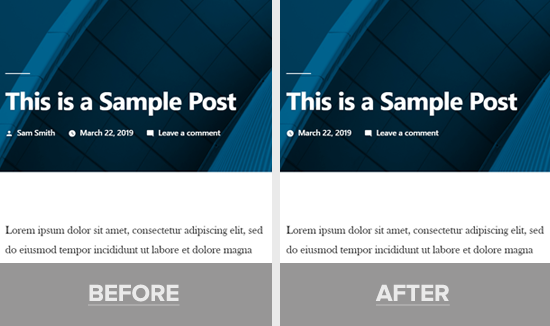 Author Name Removed in WordPress Post Demo