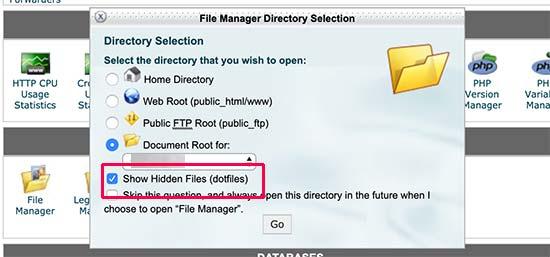 Show hidden files in cPanel