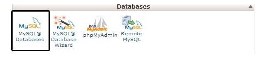Database cPanel