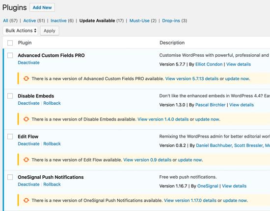 WordPress Plugin Update One at a Time