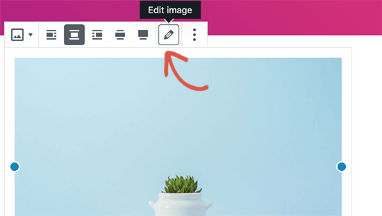 Editing an image in default WordPress editor