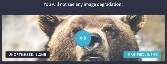 Optimized vs Unoptimized Images in WordPress