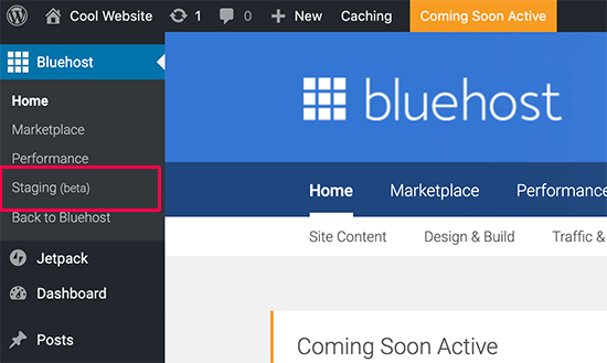 Staging site option on Bluehost
