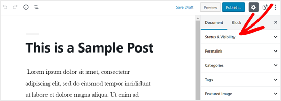 Status and Visibility Option in WordPress Post Editor
