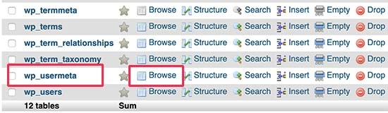 Browsing wp_usermeta table