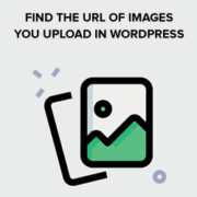 How to Get the URL of Images You Upload in WordPress