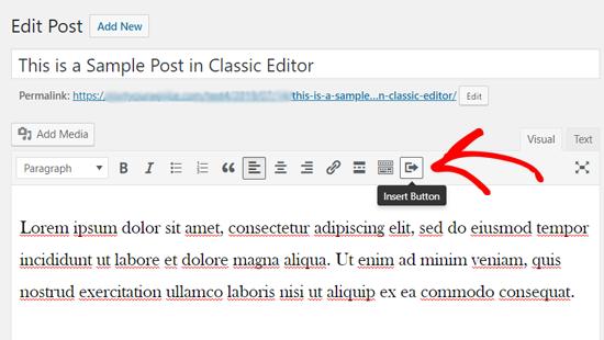 Insert Button Icon in Classic WordPress Editor
