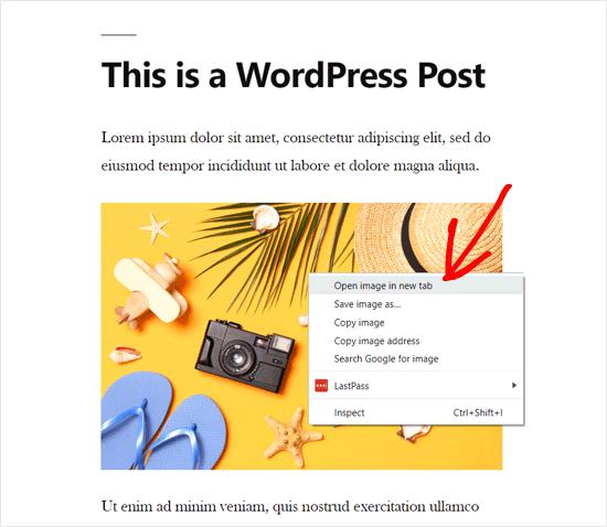Open WordPress Image in a New Tab