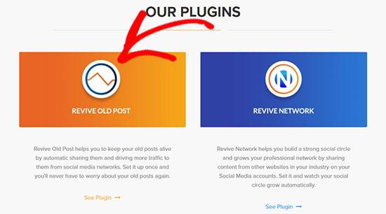 Revive Old Post plugin