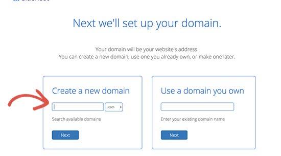 Select a domain name