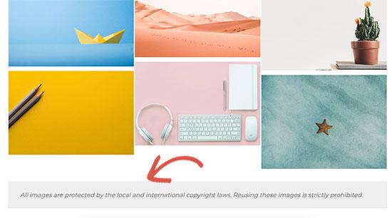 Copyright reminder text