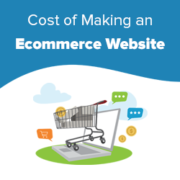 How Much Do Ecommerce Websites Cost in 2021? (Real Numbers)