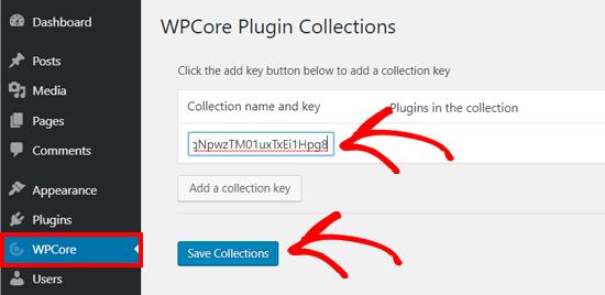 Save WPCore Plugin Collection Key on WordPress