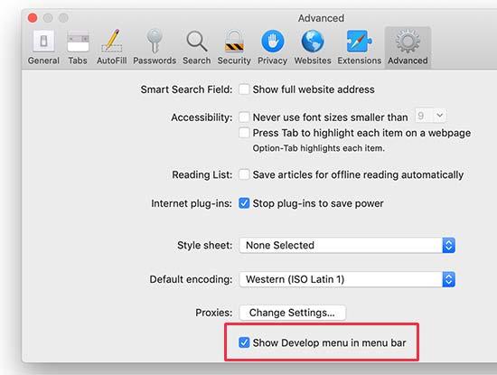 Enable Develop menu in Safari