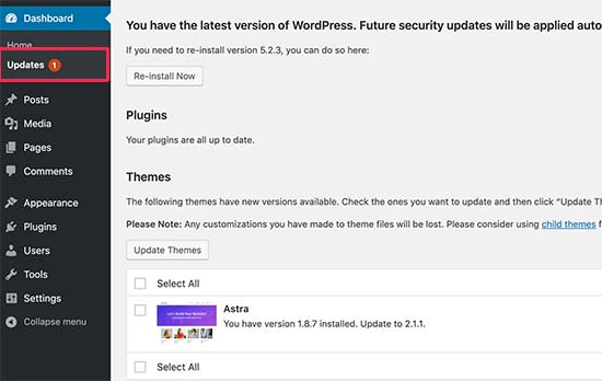 How To Update Wordpress Theme Without Losing Customization