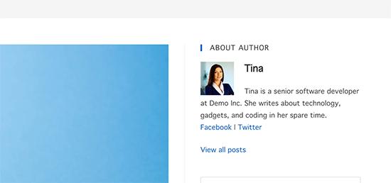 Author bio box widget