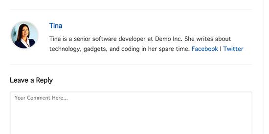 Preview default author info box