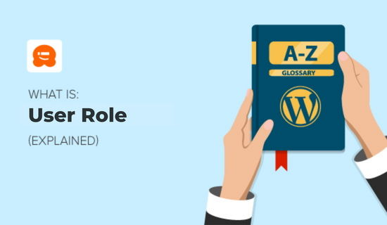 What is User Role