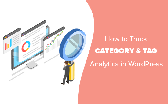 Tracking categories and tags in WordPress