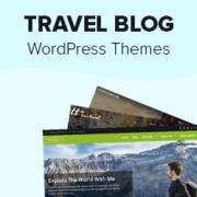 25 Best WordPress Themes for Travel Blogs