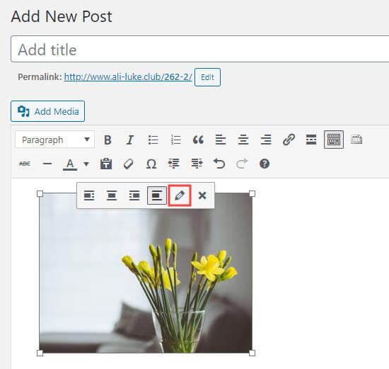 Editing an image in the WordPress classic editor